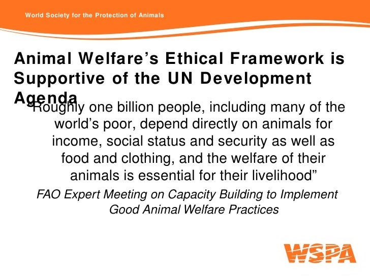 the existence of animal ethics largely depends on environmental ethics Essay on animal breeding ethics  by transitioning into a sport largely  i will show the existence of animal ethics depends on the existence of environmental.