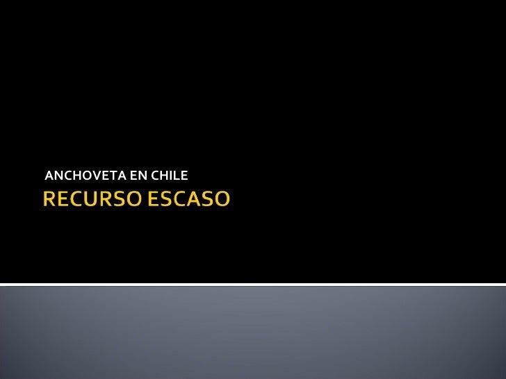 ANCHOVETA EN CHILE