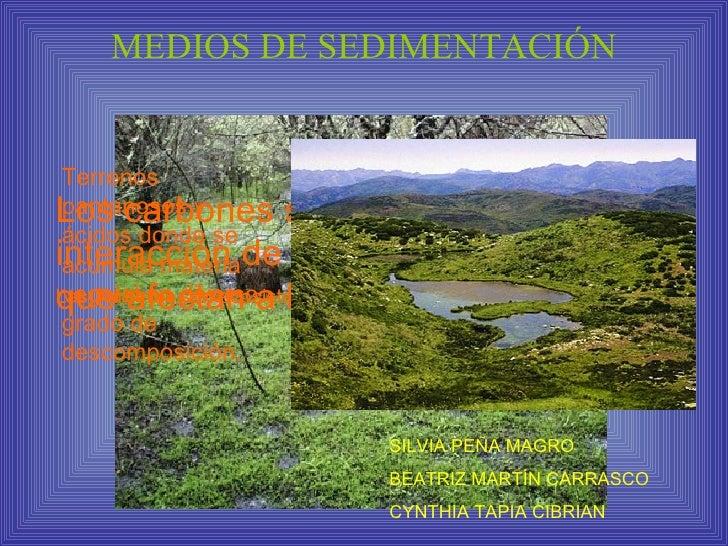 MEDIOS DE SEDIMENTACIÓN    Terrenos Los carbones se originan por la  pantanosos y  ácidos donde se interacción de factores...