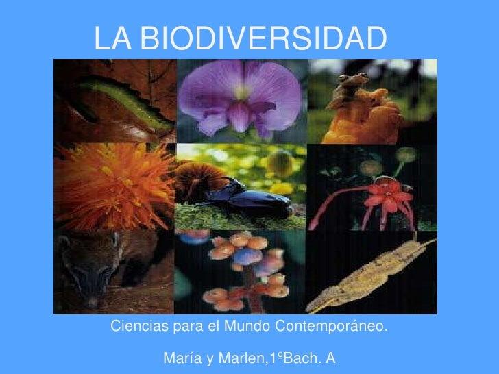 LA BIODIVERSIDAD<br />Ciencias para el Mundo Contemporáneo. <br />María y Marlen,1ºBach. A<br />