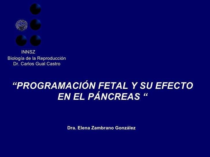 """"""" PROGRAMACIÓN FETAL Y SU EFECTO EN EL PÁNCREAS """" Biología de la Reproducción Dr. Carlos Gual Castro Dra. Elena Zambrano G..."""