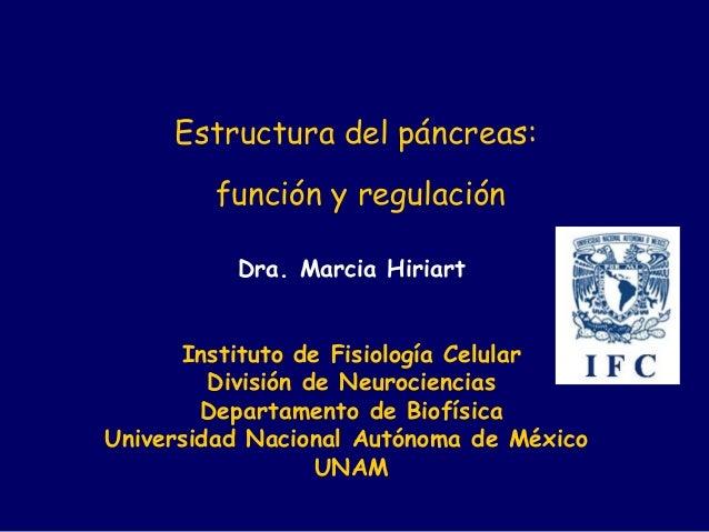 Dra. Marcia Hiriart Instituto de Fisiología Celular División de Neurociencias Departamento de Biofísica Universidad Nacion...