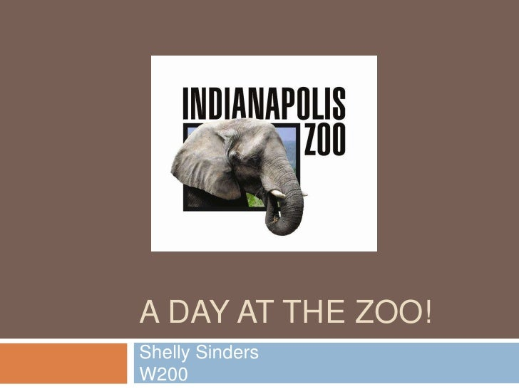 A DAY AT THE ZOO! Shelly Sinders W200