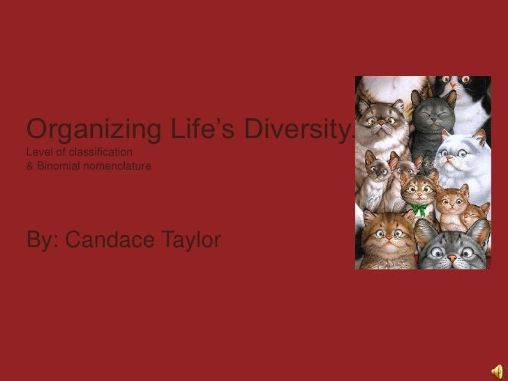 Organizing Life's Diversity.Level of classification & Binomial nomenclature<br />By: Candace Taylor<br />