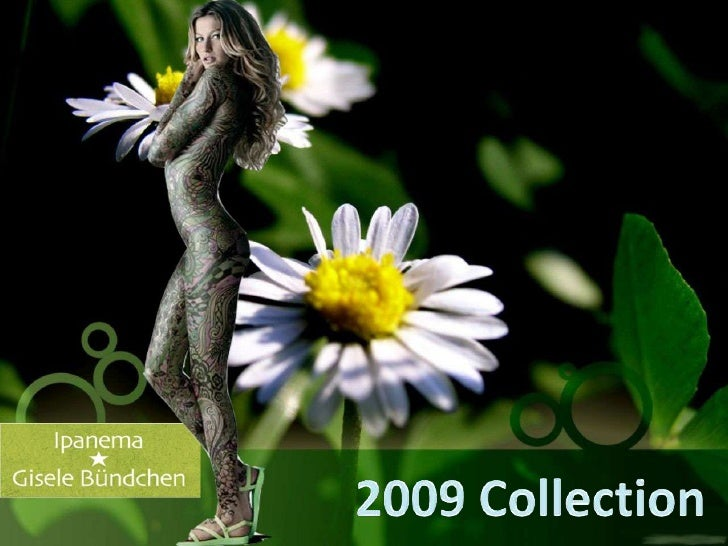 2009 Collection<br />
