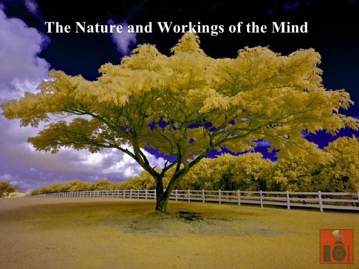 The Nature and Workings of the Mind