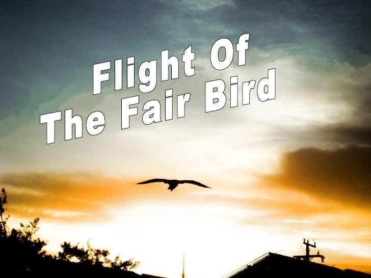 Flight Of  The Fair Bird