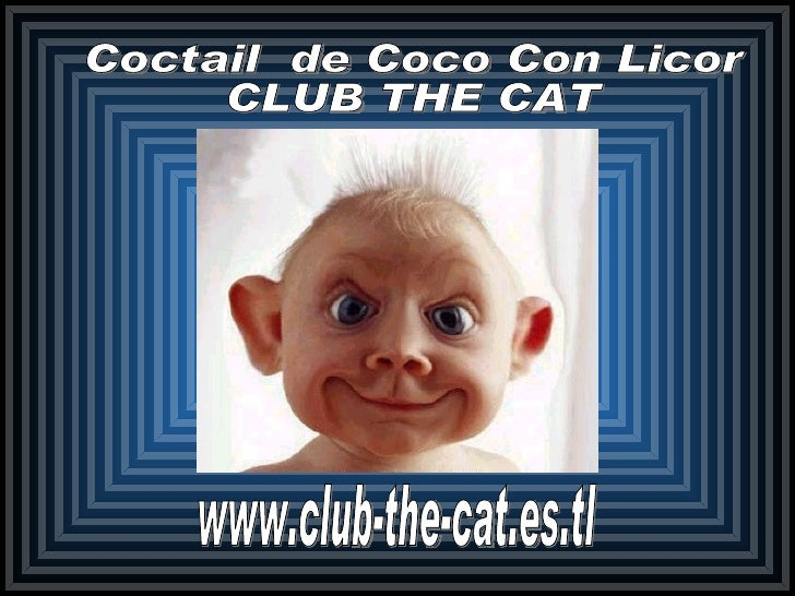 www.club-the-cat.es.tl Coctail  de Coco Con Licor CLUB THE CAT