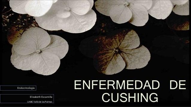 ENFERMEDAD DE CUSHINGElizabeth Escamilla UABCValle de las Palmas Endocrinología