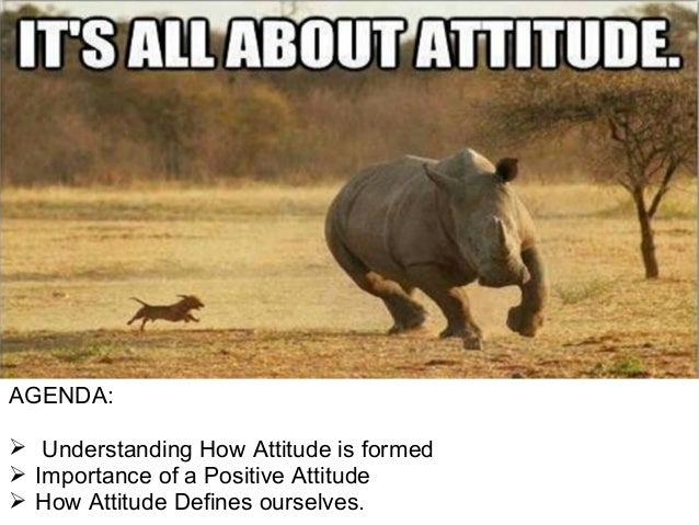 Your Attitude is Every...