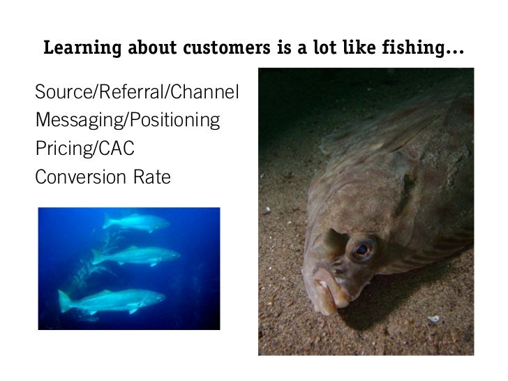 Learning about customers is a lot like fishing…Source/Referral/ChannelMessaging/PositioningPricing/CACConversion Rate