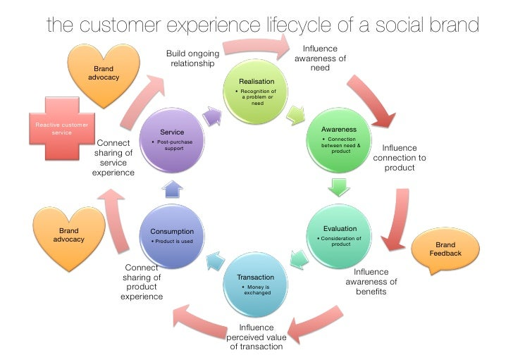 the customer experience lifecycle of a social brand                                                                       ...