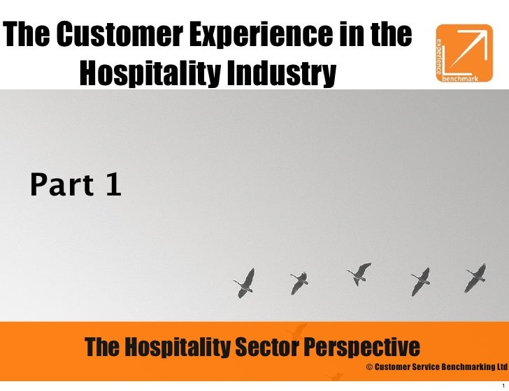 The Customer Experience in the     Hospitality Industry Part 1     The Hospitality Sector Perspective                     ...