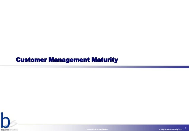 Customer Management Maturity                                                                           1                  ...