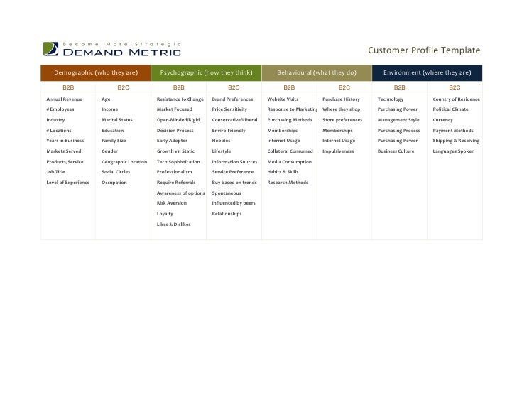 Customer profile template free altavistaventures Choice Image