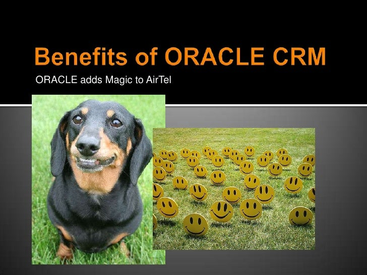    Change Management      Oversee enhancement      Constantly improve customer experience    Aligning CRM to Airtel's ...