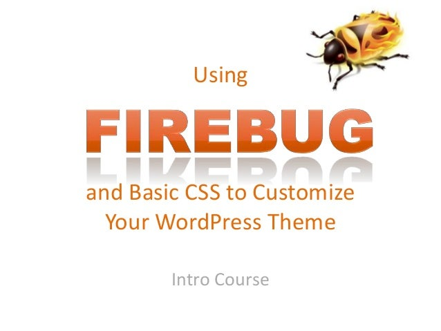 Using and Basic CSS to Customize Your WordPress Theme Intro Course