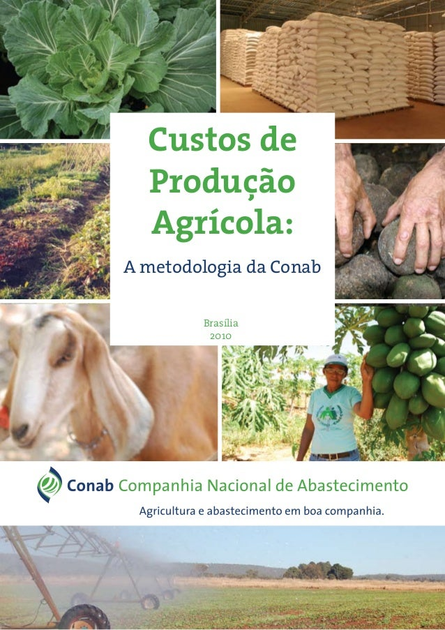 Custos de Produção Agrícola: A metodologia da Conab Brasília 2010