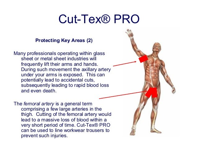 Cut Tex 174 Pro Cut Resistant Fabric Presentation Glass And