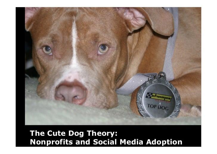 The Cute Dog Theory: Nonprofits and Social Media Adoption