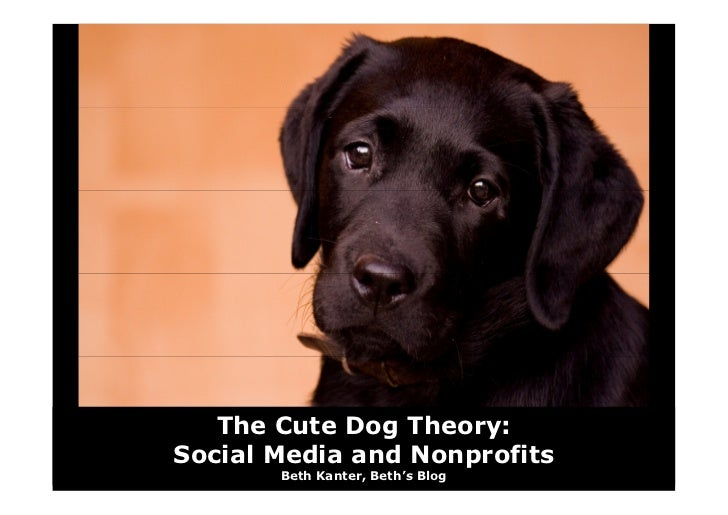 The Cute Dog Theory: Social Media and Nonprofits        Beth Kanter, Beth's Blog