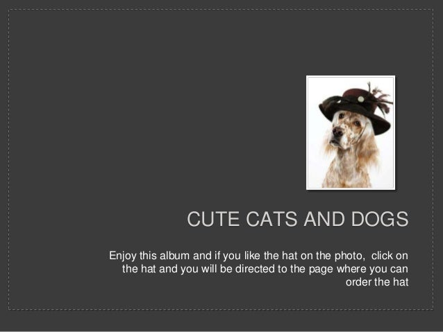 CUTE CATS AND DOGSEnjoy this album and if you like the hat on the photo, click on  the hat and you will be directed to the...