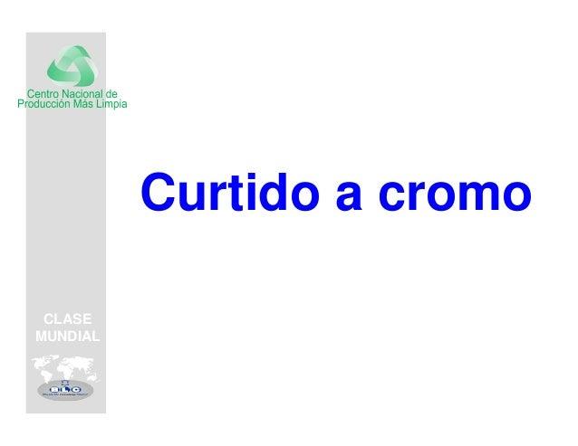 CLASEMUNDIAL          Curtido a cromo CLASEMUNDIAL