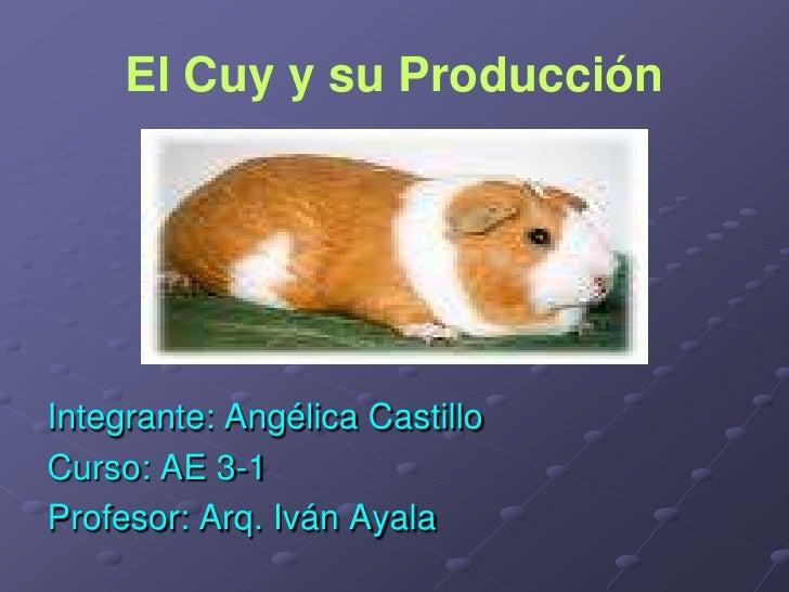 El Cuy y su Producción<br />Integrante: Angélica Castillo<br />Curso: AE 3-1<br />Profesor: Arq. Iván Ayala<br />