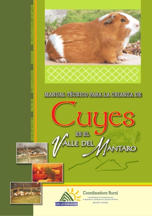 MANUAL TÉCNICO PARA LA CRIANZA DEMANUAL TÉCNICO PARA LA CRIANZA DE EN ELEN EL ALLE DELALLE DEL ANTAROANTARO MM CuyesCuyes ...
