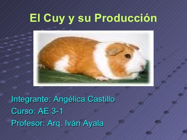 El Cuy y su Producción <ul><li>Integrante: Angélica Castillo </li></ul><ul><li>Curso: AE 3-1 </li></ul><ul><li>Profesor: A...