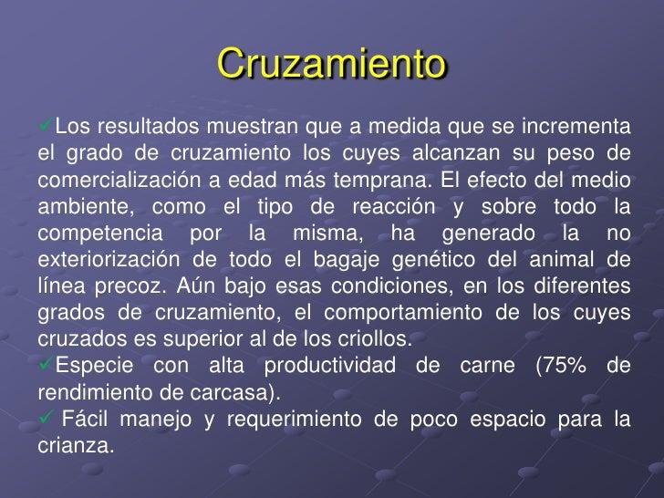 Cruzamiento<br /><ul><li>Los resultados muestran que a medida que se incrementa el grado de cruzamiento los cuyes alcanzan...
