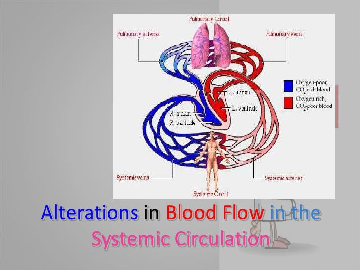 Alterations inBlood Flow in the Systemic Circulation<br />