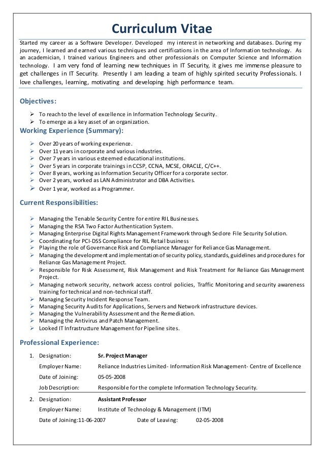 cv of it security professional