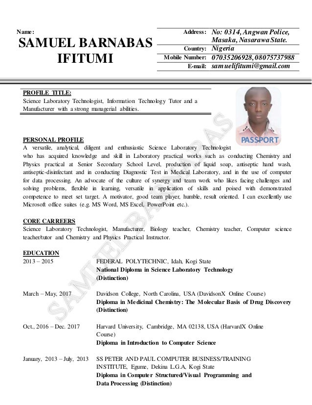 curriculum vitae  cv  template for beginners