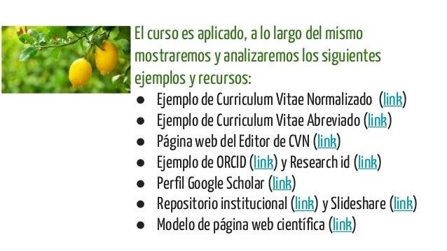 curriculum vitae normalizado ejemplo