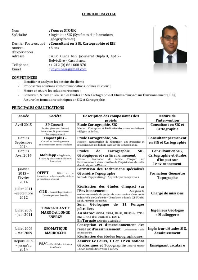 cv consultant sig et carto 2015