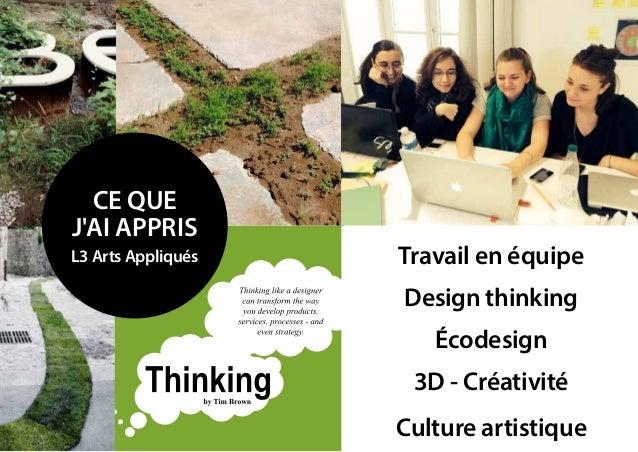 ce que j'ai appris L3 Arts Appliqués Travail en équipe Design thinking écodesign culture artistique 3D - créativité