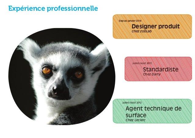 Expérience professionnelle  Depuis janvier 2014  Designer produit  chez zobLab  Juillet/Août 2013  Juillet/Août 2012  Stan...