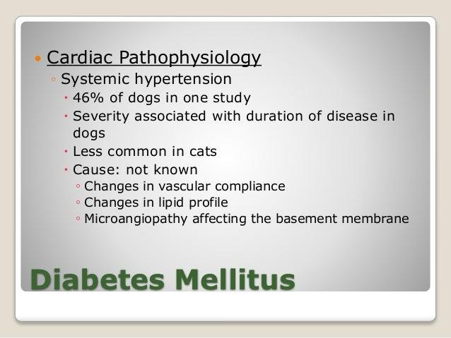Cardiovascular Effects Dr C Sedacca 4 5 14