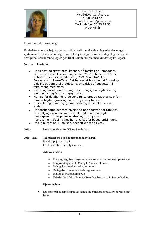 personlige kvalifikationer cv