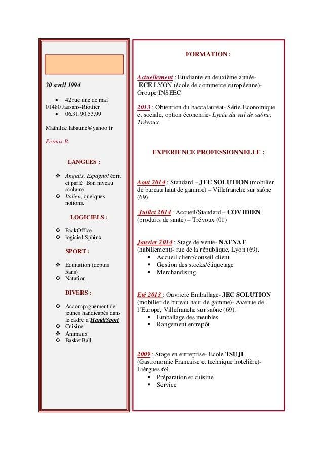 cv french version informatique