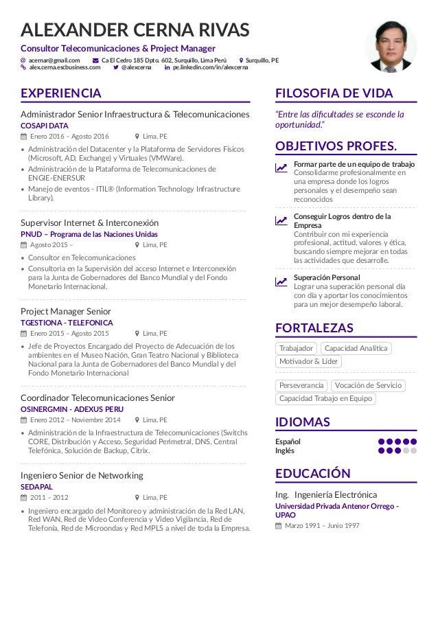 Curriculum Vitae Alexander Cerna Rivas