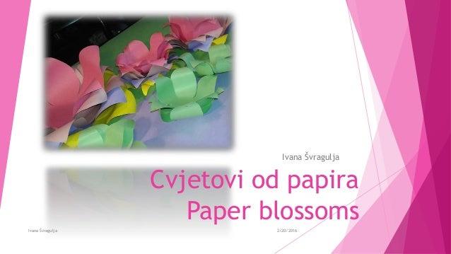 Cvjetovi od papira Paper blossoms Ivana Švragulja 2/20/2016Ivana Švragulja