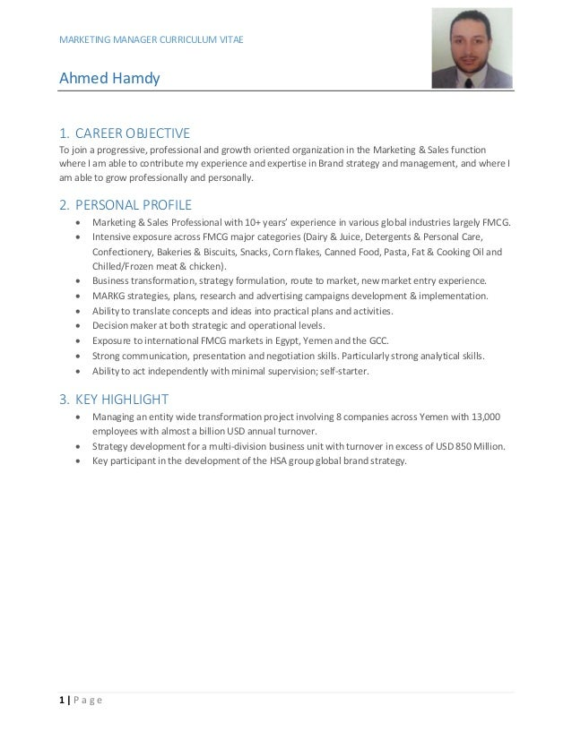 Marketing Manager CV V08dec15