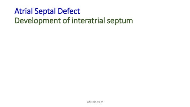 Atrial Septal Defect Development of interatrial septum JAN-2015-CSBRP