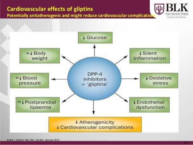 compare triglycerides phospholipids and steroids