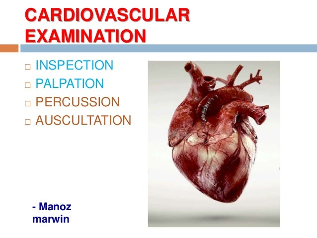 CARDIOVASCULAR EXAMINATION  INSPECTION  PALPATION  PERCUSSION  AUSCULTATION - Manoz marwin