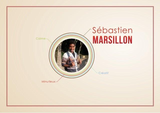 Sébastien  MARSILLON  Créatif  Calme  Minutieux
