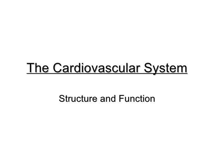 The Cardiovascular System Structure and Function