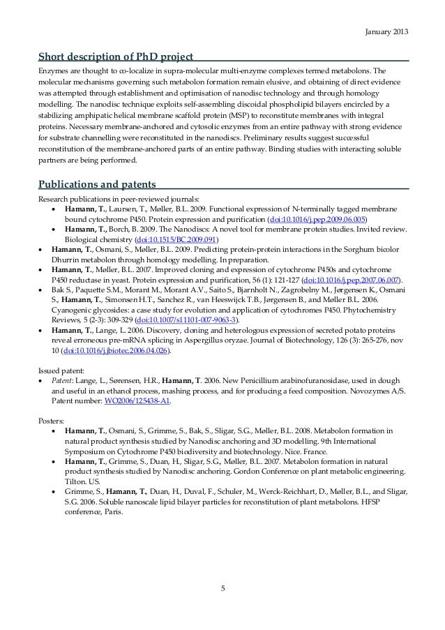 100 executive resume package brightside resumes